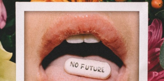Shaun Frank- No Future
